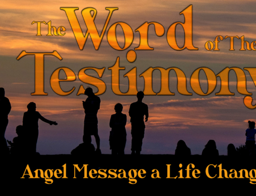Angel Message a Life Changer – Lisa N